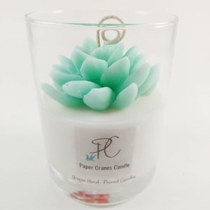 Succulent candles soy wax perfect gift